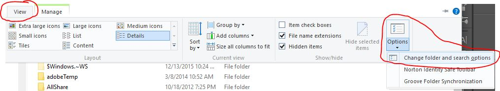 Windows 10 Show Hidden Files view tab