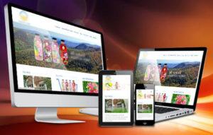 Premium Website Design
